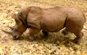 Step away from the rhino...well, maybe not this rhino.