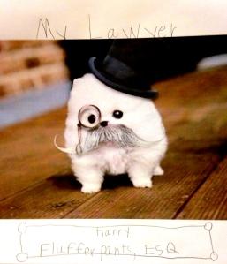 Harry Flufferpants, Esq.