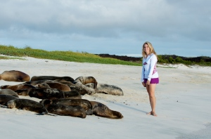 Being a wise bunny and soaking up the moment with some sea lions in the Galapagos Islands.