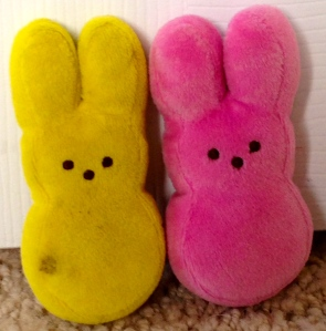 These two bunnies may resemble each other but they are unique in their bunniness.