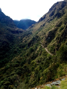 A portion of the Inca Trail ahead of us