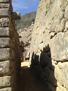Help! I'm lost in Machu Picchu and I can't find my llamas.
